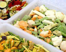 congelats-verdura