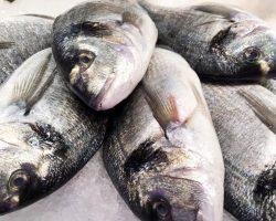 peix-manero